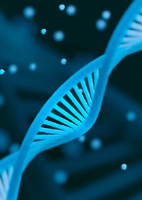 doctorado en biotecnologia ufv Escuela Internacional de Doctorado Estudiar en Universidad Privada Madrid