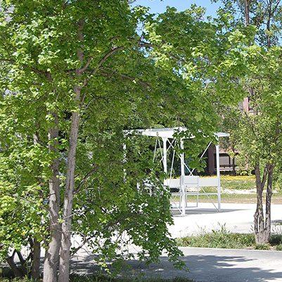 espacios gerencia 15 401x401 En nuestro campus Estudiar en Universidad Privada Madrid