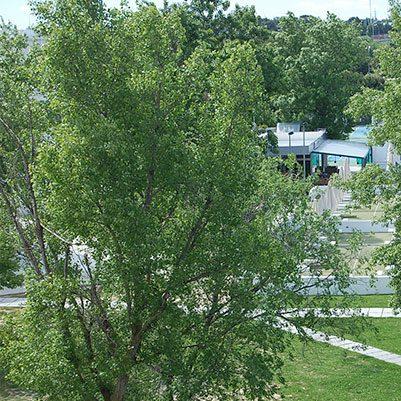 espacios gerencia 16 401x401 En nuestro campus Estudiar en Universidad Privada Madrid