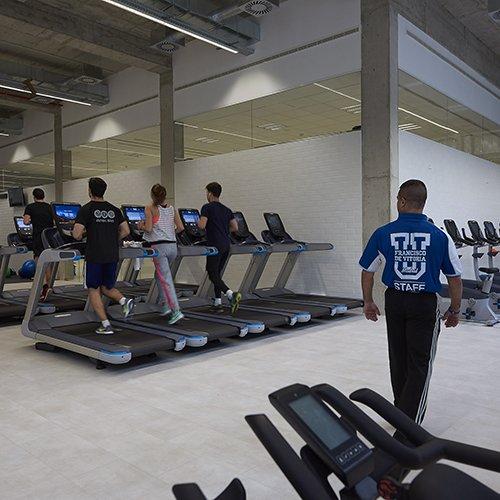fisio instalaciones 4 Diplome kinesitherapie Madrid Estudiar en Universidad Privada Madrid