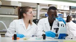 portada farmacia titulaciones relacionadas Biotecnología + Farmacia Estudiar en Universidad Privada Madrid
