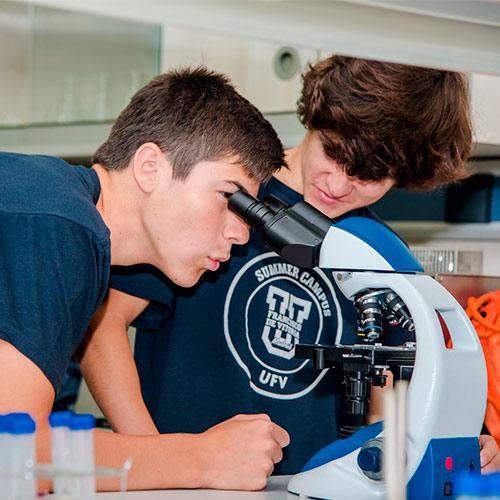summer campus ufv 2019 30 Summer Campus Estudiar en Universidad Privada Madrid