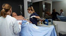 Medicina titulacion relacionada Biotecnología + Farmacia Estudiar en Universidad Privada Madrid