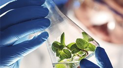 tit relacionadas biofarma Biomedicina