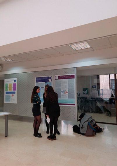neurociencia1 401x567 I Curso de Neurociencia Fundamental Estudiar en Universidad Privada Madrid