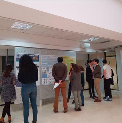 neurociencia4 401x405 I Curso de Neurociencia Fundamental Estudiar en Universidad Privada Madrid