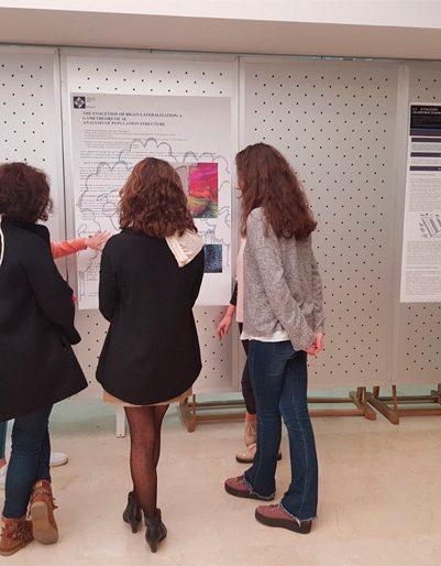 neurociencia5 401x514 I Curso de Neurociencia Fundamental Estudiar en Universidad Privada Madrid
