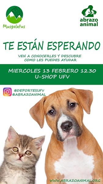 ed91b594 8bc8 469d 90a3 93c010754226 Charla sobre la adopción de animales