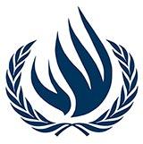 derechos humanos ufvmun COMMITEES