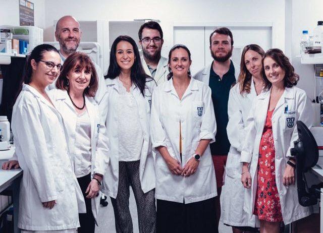 grupo de Endocannabinoides e1592384901848 Un proyecto en el que participa el grupo de investigación en Endocannabinoides y Neuroinflamación que coordina Julián Romero obtiene una de las Ayudas a la Investigación en Psiquiatría, Psicología y/o Neurociencias del Niño y el Adolescente y en Neuropediatría de la Fundación Alicia Koplowitz Estudiar en Universidad Privada Madrid