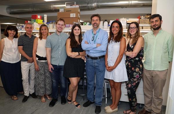 Grupo baja Fundación Vithas y la Universidad Francisco de Vitoria constituyen un laboratorio para la investigación de tumores cerebrales Estudiar en Universidad Privada Madrid
